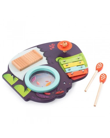 Instrumentos musicales infantiles - Moulin Roty